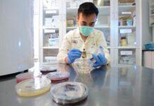 Petugas laboratorium di Phapros