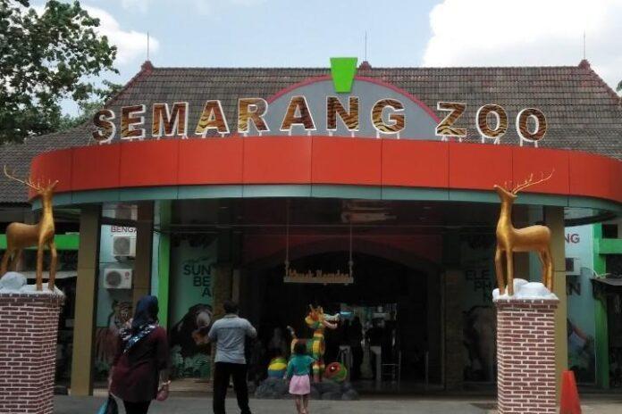 Taman Margasatwa Semarang Zoo