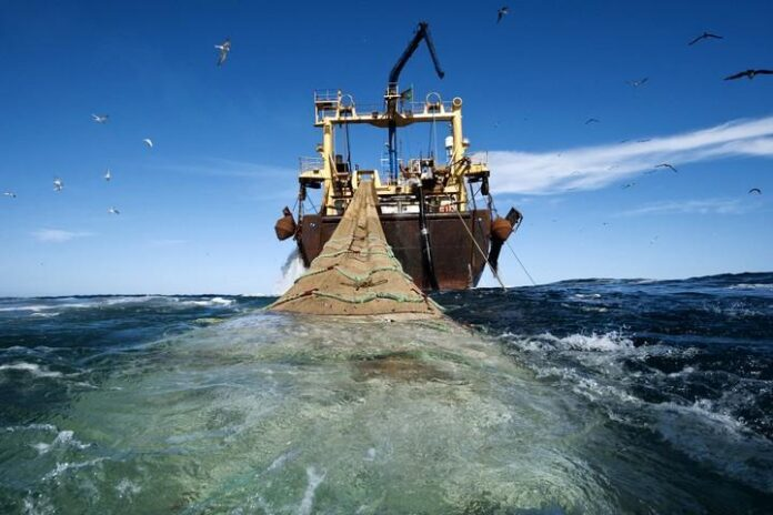 Ilustrasi Illegal Fishing