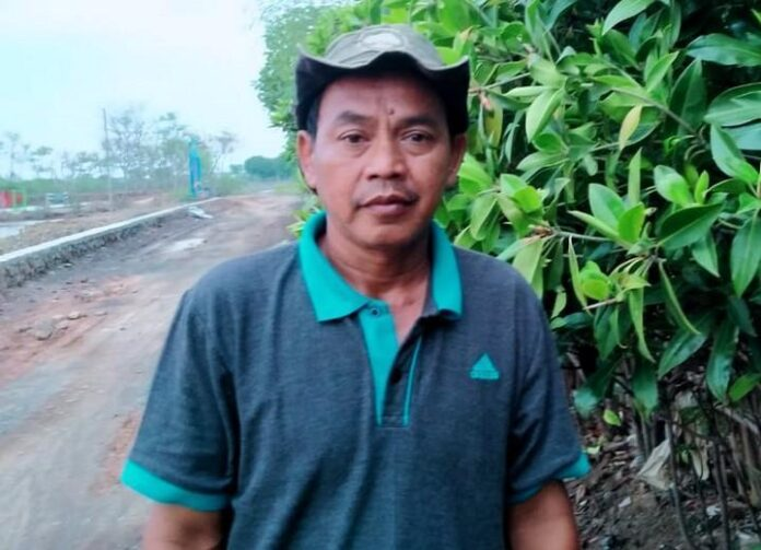 Wasito Pelestari Hutan Mangrove di pesisir Kendal